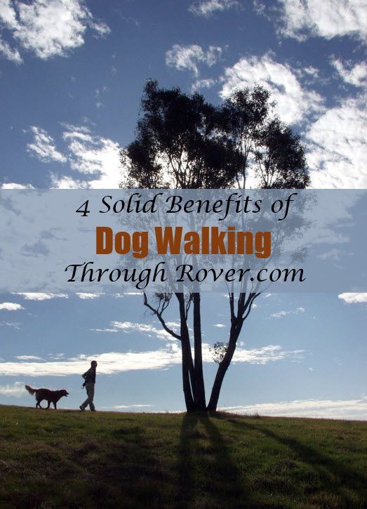 4 benefits of dog walking