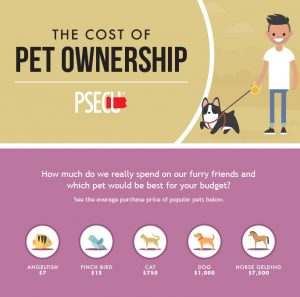 cost of owning cats versus dogs