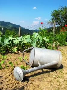 legit ways to make money from home gardening