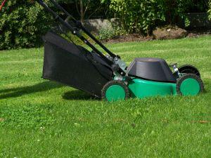20140222 - lawn mower