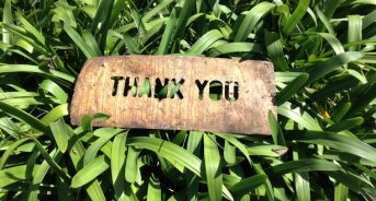 Showing Gratitude Isn't Just for Thanksgiving Day