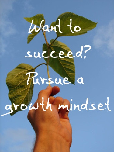Pursue a Growth Money Mindset
