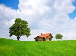 8 Simple Ways to Go Green While Saving Money