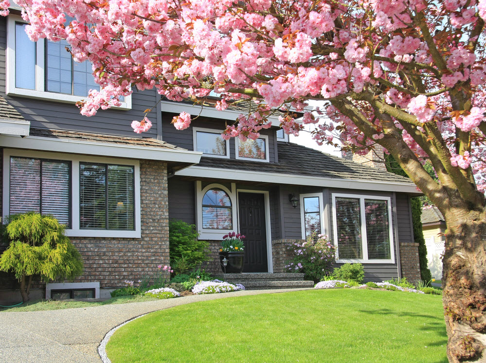 Landscaping on a Budget: 5 Easy Tips For Your Next Renovation